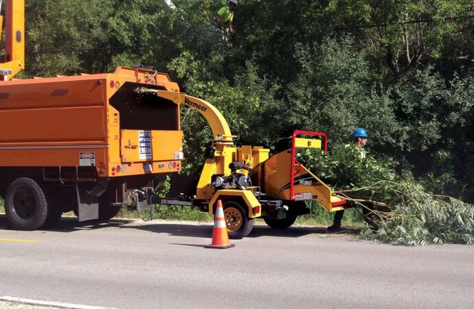 Commercial Tree Services-Miramar FL Tree Trimming and Stump Grinding Services-We Offer Tree Trimming Services, Tree Removal, Tree Pruning, Tree Cutting, Residential and Commercial Tree Trimming Services, Storm Damage, Emergency Tree Removal, Land Clearing, Tree Companies, Tree Care Service, Stump Grinding, and we're the Best Tree Trimming Company Near You Guaranteed!