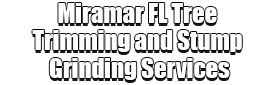 Miramar FL Tree Trimming and Stump Grinding Services