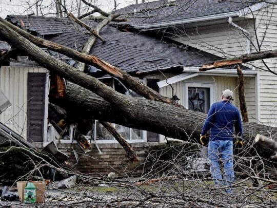 Storm Damage-Miramar FL Tree Trimming and Stump Grinding Services-We Offer Tree Trimming Services, Tree Removal, Tree Pruning, Tree Cutting, Residential and Commercial Tree Trimming Services, Storm Damage, Emergency Tree Removal, Land Clearing, Tree Companies, Tree Care Service, Stump Grinding, and we're the Best Tree Trimming Company Near You Guaranteed!
