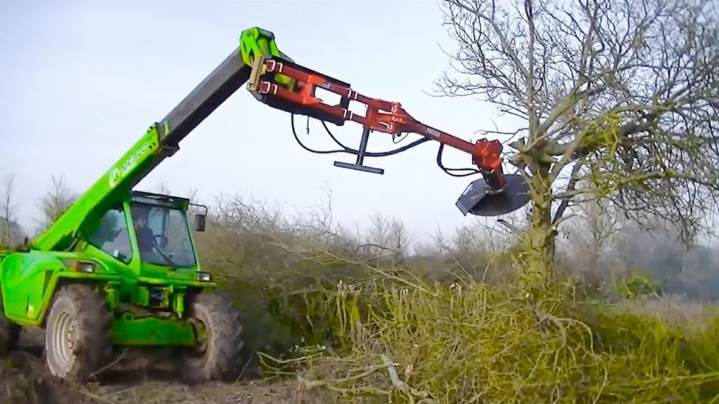 Tree Trimming Services-Miramar FL Tree Trimming and Stump Grinding Services-We Offer Tree Trimming Services, Tree Removal, Tree Pruning, Tree Cutting, Residential and Commercial Tree Trimming Services, Storm Damage, Emergency Tree Removal, Land Clearing, Tree Companies, Tree Care Service, Stump Grinding, and we're the Best Tree Trimming Company Near You Guaranteed!